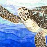 Curious Sea Turtle Poster