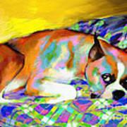 Cute Boxer Dog Portrait Painting Poster by Svetlana Novikova