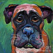 Cute Boxer Puppy Dog With Big Eyes Painting Poster by Svetlana Novikova
