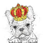 Cute Puppy Wearing A Crown. French Poster