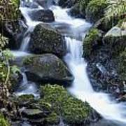 Cwm Gwaun Waterfall Poster