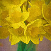 Daffodils 10 Poster