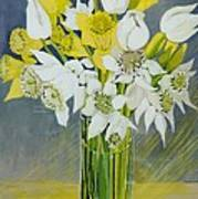 Daffodils And White Tulips In An Octagonal Glass Vase Poster