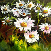 Daisies Poster by Robert Carver
