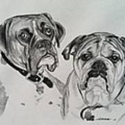 Daisy And Duke Poster