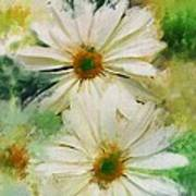 Daisy Love Poster