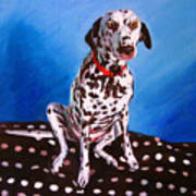 Dalmatian On Spotty Cushion Poster