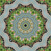 Dancing Mandevilla Blossom Kaleidoscope Poster