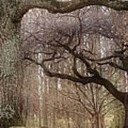 Dancing Trees Poster