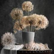 Dandelion Seed Pod Poster