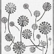Dandelion Seeds Grey Poster