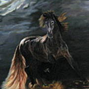 Dappled Horse In Stormy Light Poster