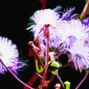 Dark Dandelions Poster