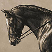Dark Dressage Horse Aged Photo Fx Poster