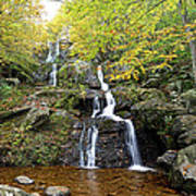 Dark Hollow Falls Poster by Metro DC Photography