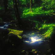 Dartmoor Stream Poster