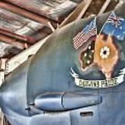 Darwin's Pride-b52 Bomber Poster