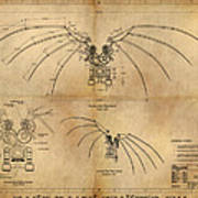 Davinci's Wings Poster