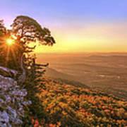 Daybreak On Mt. Magazine - Arkansas - Cedar Tree - Autumn Poster