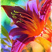 Daylily Delight Poster