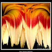 Daylily Flower Abstract 2 Poster