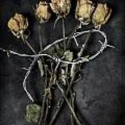 Dead Roses Poster