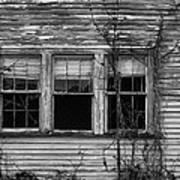 Decay Poster by Hazel Billingsley