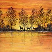Deer At Sunset-2 Poster