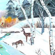 Deer Creek In Winter Poster