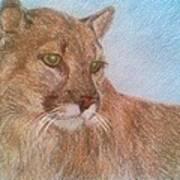 Deer Tiger Poster