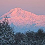 Denali December Sunrise Poster