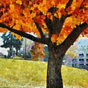 Denver Park 5 Poster