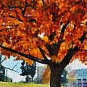 Denver Park 6 Poster