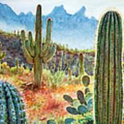 Desert Beauty Poster