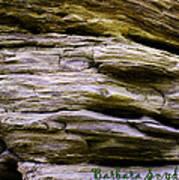 Desert Boulder Detail Poster