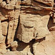 Desert Face Poster