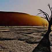 Desert Floor Poster