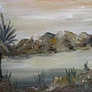 Desert In Monachrome Poster