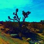 Desert Life  Poster
