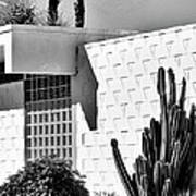 Desert Modern Bw Palm Springs Poster