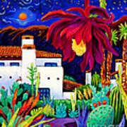 Desert Night Music Poster