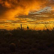 Desert Southwest Skies  Poster