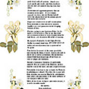 Desiderata With Art Poster