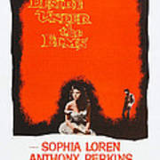 Desire Under The Elms, Us Poster Poster