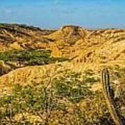 Desolate Desert Landscape Poster
