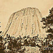 Devils Tower National Monument Between Trees Wyoming Usa Rustic Poster by Shawn O'Brien