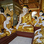 different sitting Buddhas in a circle in SHWEDAGON PAGODA Poster