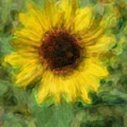 Digital Painting Series Sunflower Poster