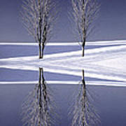 Digitally Manipulated Image Of Two Trees In The Middle Of Winter Poster