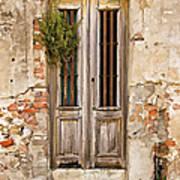 Dilapidated Brown Wood Door Of Portugal Poster